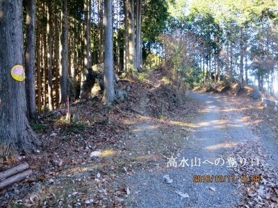 林道から高水山への取付き