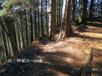 神塚山への取付き