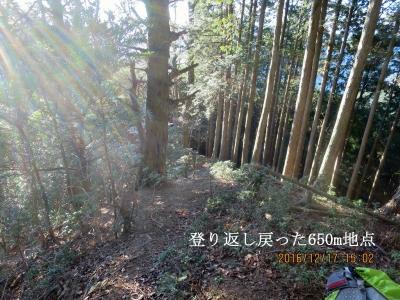 神塚山と見誤り急坂を下りまた登り返したところ(神塚山より標高30m位高い)