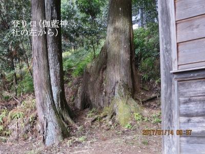 登山口(伽藍神社左側)