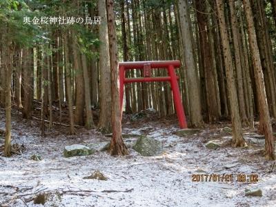 金桜神社奥社跡の鳥居