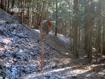 林道に下りる