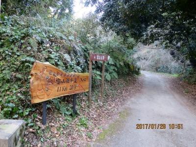 富山鞍部へ林道