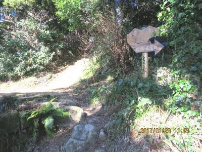 南峰への登りの階段(左から福満寺からの登って来たところ)