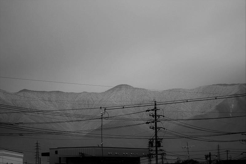 IMGP9759.jpg
