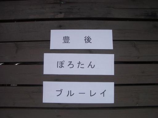 果樹名印刷