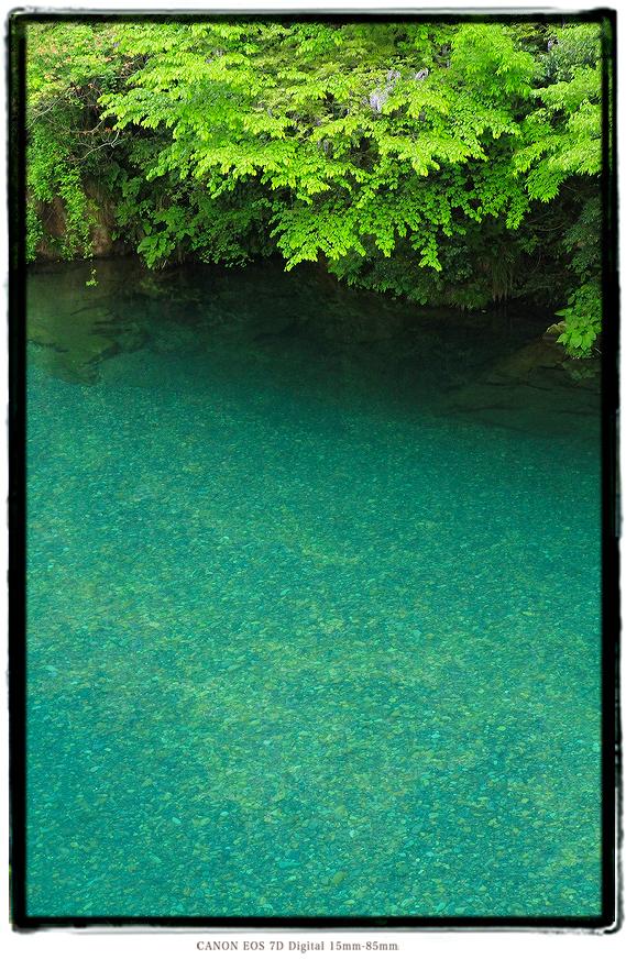 清流板取川0601summer01.jpg