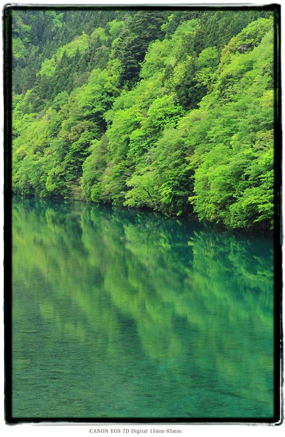 清流板取川0601summer02.jpg