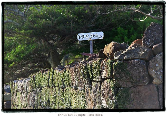 1611nozaki0509.jpg