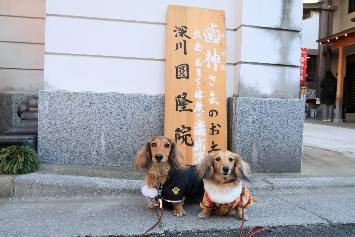 20160102Fukagawa3.jpg