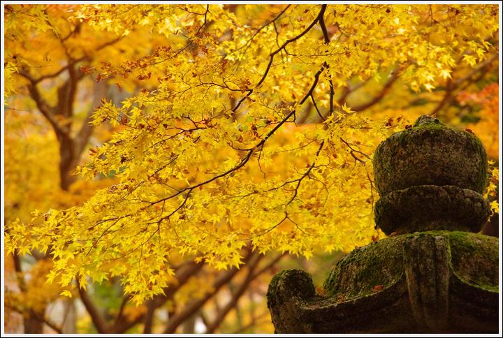 2016年11月21日 談山神社 (1)
