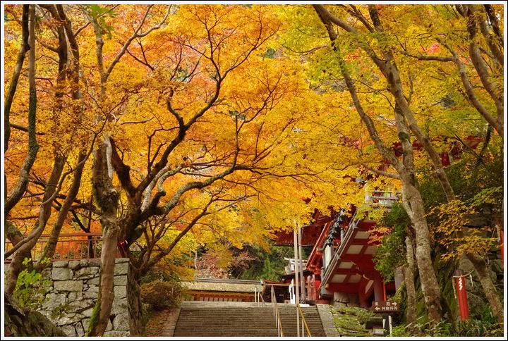 2016年11月21日 談山神社 (4)
