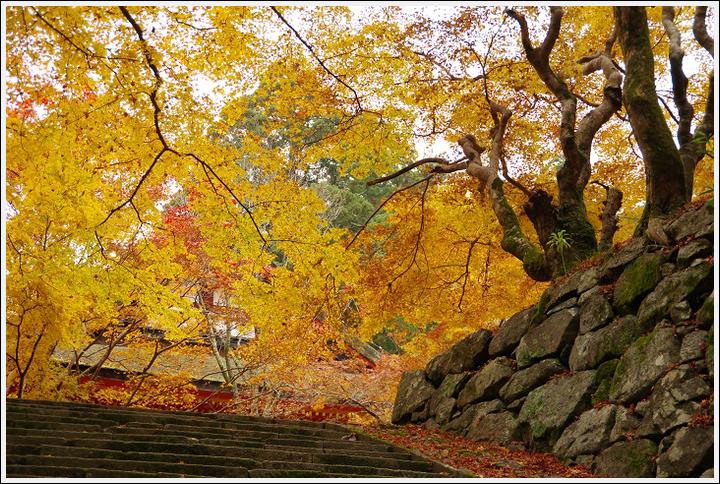 2016年11月21日 談山神社 (5)