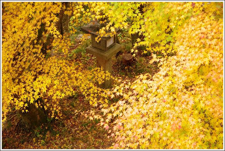 2016年11月21日 談山神社 (9)
