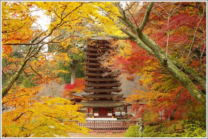 2016年11月21日 談山神社 (6)