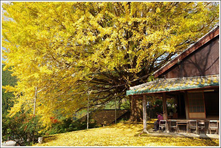 2016年11月22日 湯の峰温泉ツーリング (5)