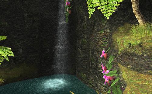 寺院わきの小さな滝
