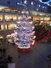 クリスマスツリー(ファクトリー)a