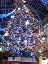 クリスマスツリー(ファクトリー)b