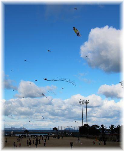 凧揚げ大会9