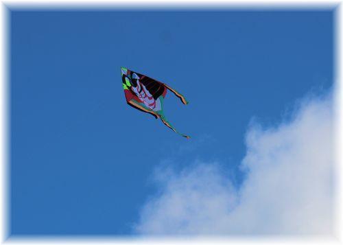 凧揚げ大会4