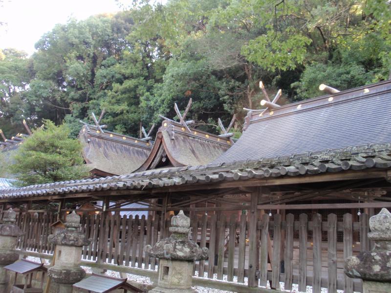 闘鶏神社4