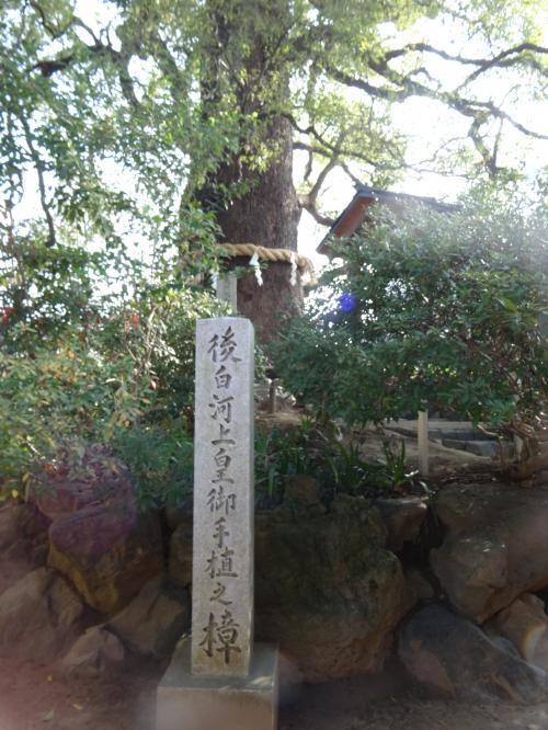 新熊野神社2