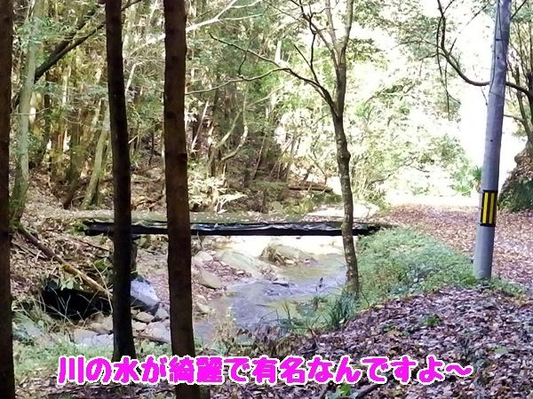 川の水が有名