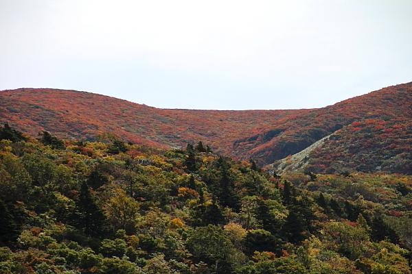 16栗駒山13