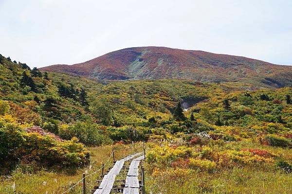 16栗駒山14