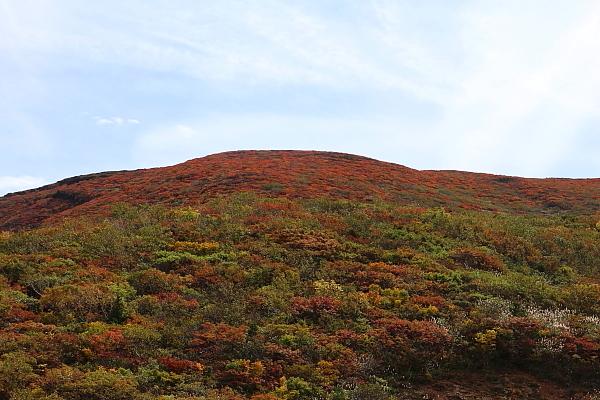 16栗駒山23