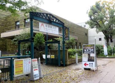 2016_11 15_東京国立科学博物館・2