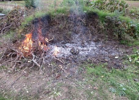2016_11 10_かぶれの木、焼却・2