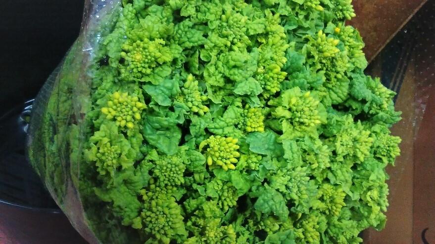 0120菜花