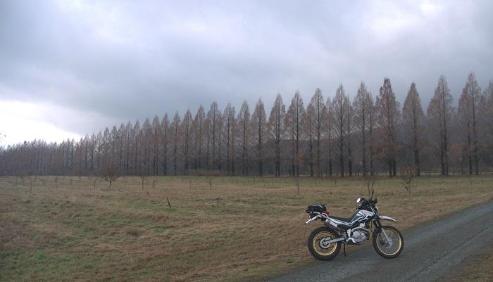 冬の福井ツーリング1612-004b