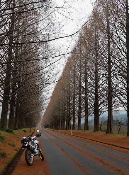 冬の福井ツーリング1612-006b