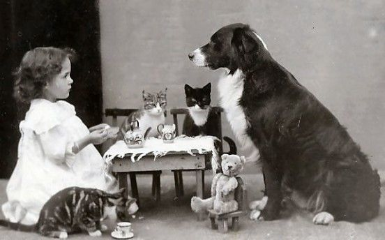 c-1900-1910-animal-tea-party-1365806842_b[1]