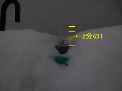 b20160109-DSCN9440.jpg