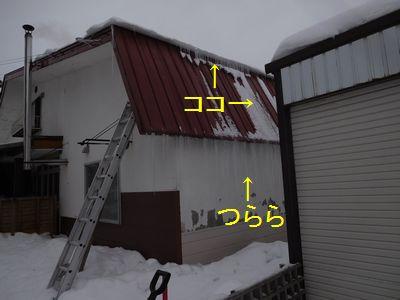 b20170109-DSCN9438.jpg
