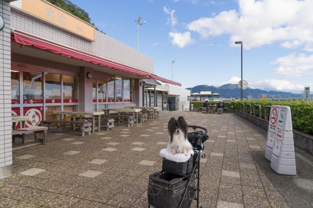 東名高速のPAで富士山見物-001