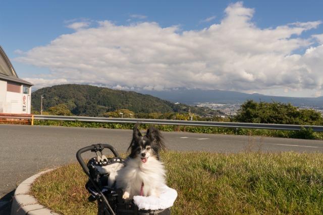 東名高速のPAで富士山見物-006