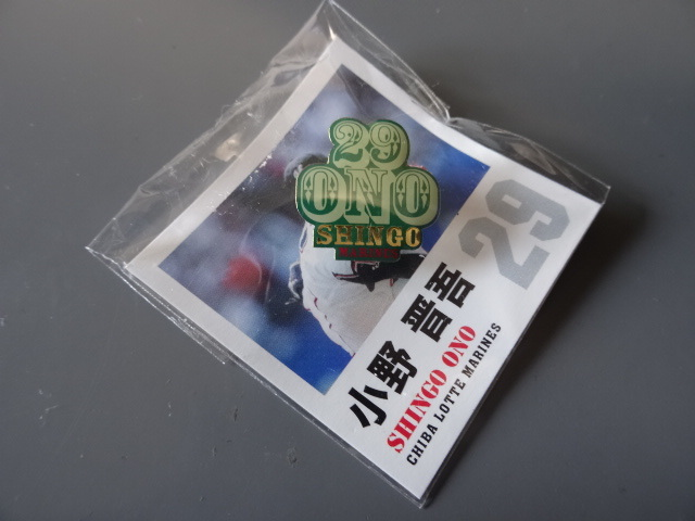 DSC06377.jpg