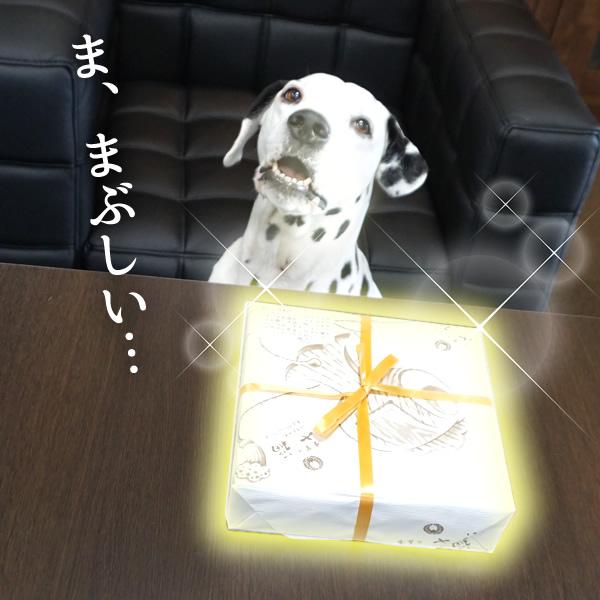 4_20161219180601cab.jpg