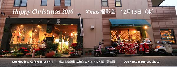 C29V9222a_20161217034221bec.jpg