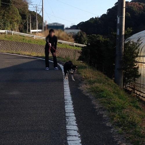 まるちゃん2017010303
