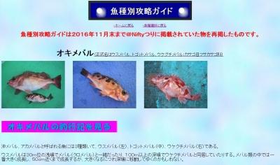 魚種別攻略ガイドオキメバル1