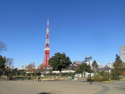 芝公園から東京タワー