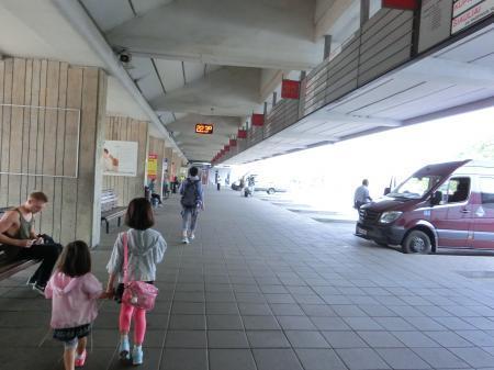 ヴィリニュス~トラカイ バス移動3