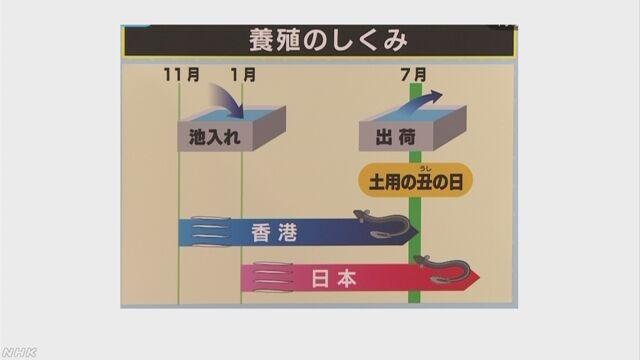 1213_19_shikumi.jpg