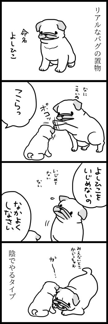 t394よしひこと遊ぶ1